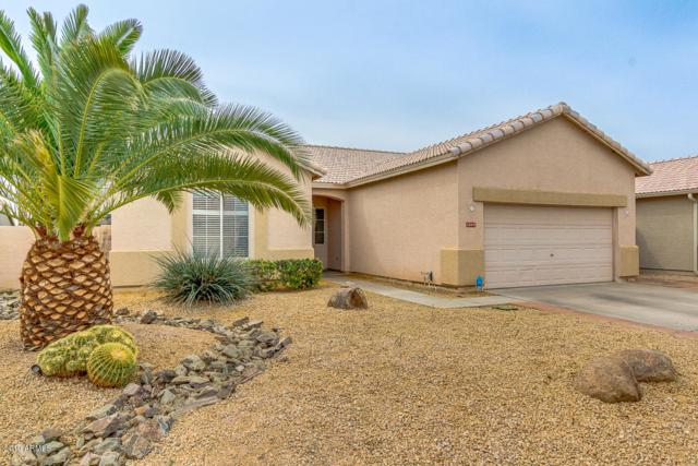 13697 W Ironwood Street, Surprise, AZ 85374 (MLS #5905375) :: Yost Realty Group at RE/MAX Casa Grande
