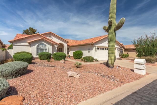 10710 E Hercules Drive, Sun Lakes, AZ 85248 (MLS #5905387) :: Occasio Realty