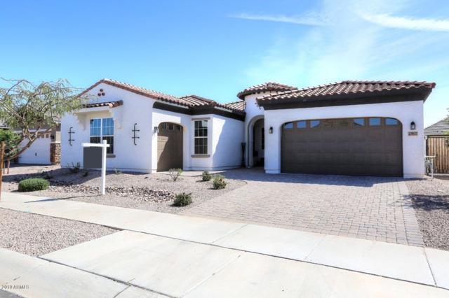 23937 S 223RD Street, Queen Creek, AZ 85142 (MLS #5905405) :: Yost Realty Group at RE/MAX Casa Grande