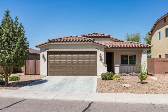 756 W Harvest Road, Queen Creek, AZ 85140 (MLS #5905450) :: Revelation Real Estate