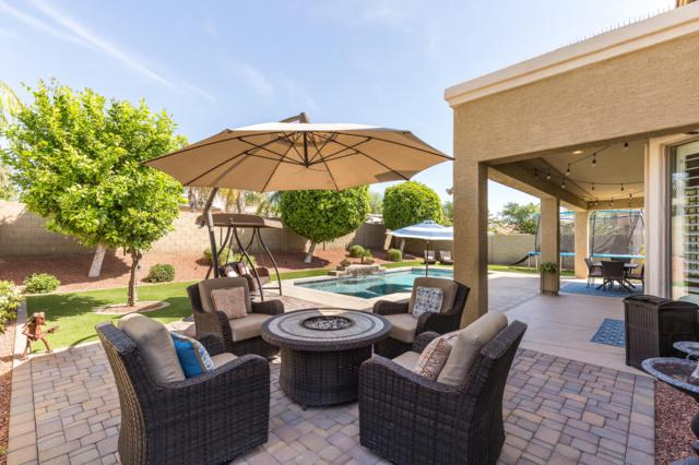 15030 W Campbell Avenue, Goodyear, AZ 85395 (MLS #5905520) :: Yost Realty Group at RE/MAX Casa Grande
