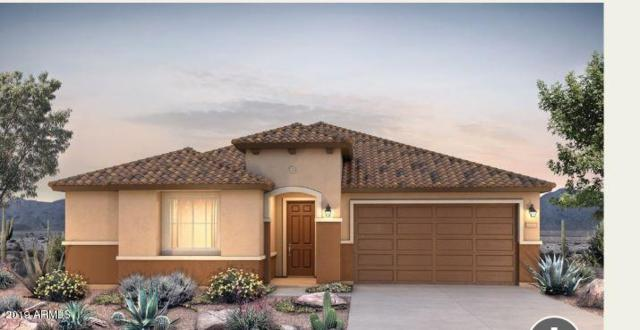 21257 N 260TH Drive, Buckeye, AZ 85396 (MLS #5905531) :: The Property Partners at eXp Realty