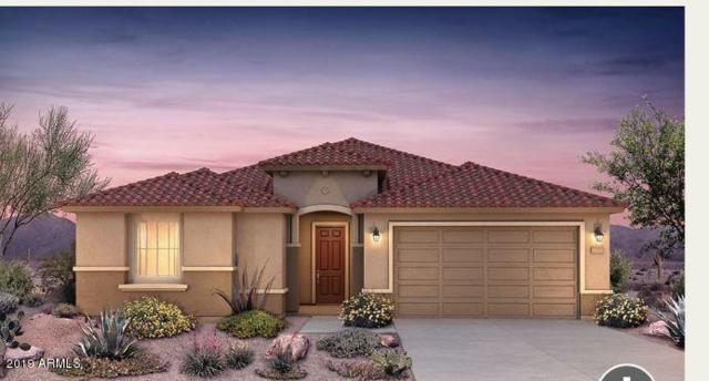 26017 W Quail Avenue, Buckeye, AZ 85396 (MLS #5905543) :: Scott Gaertner Group
