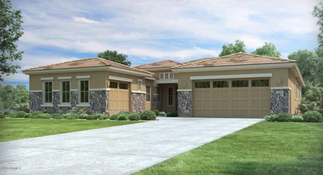 6405 W Steed Ridge, Phoenix, AZ 85083 (MLS #5905549) :: CC & Co. Real Estate Team
