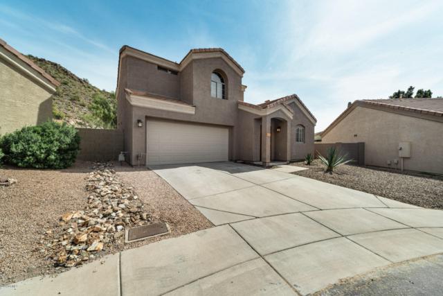1165 N Steele, Mesa, AZ 85207 (MLS #5905558) :: Yost Realty Group at RE/MAX Casa Grande