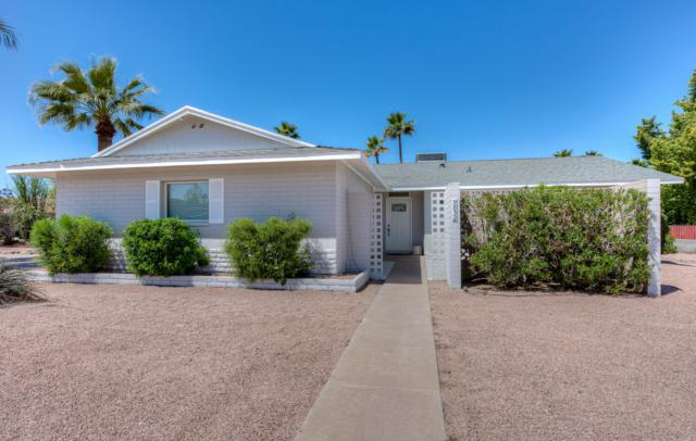 9832 N 29TH Street, Phoenix, AZ 85028 (MLS #5905581) :: Yost Realty Group at RE/MAX Casa Grande