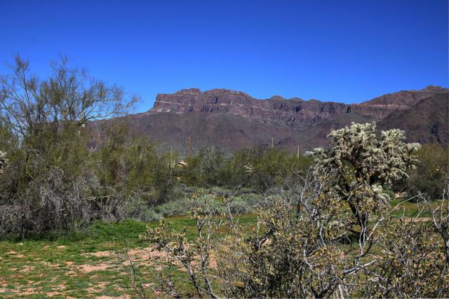 3000 S Prickly Point Drive, Gold Canyon, AZ 85118 (MLS #5905592) :: The Kenny Klaus Team