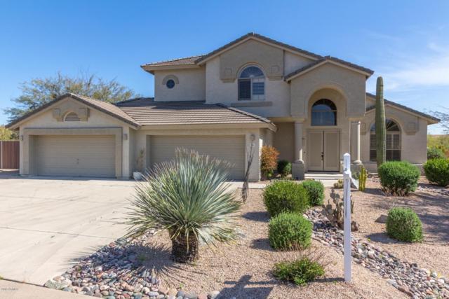 5105 E Cascalote Drive, Cave Creek, AZ 85331 (MLS #5905603) :: Yost Realty Group at RE/MAX Casa Grande