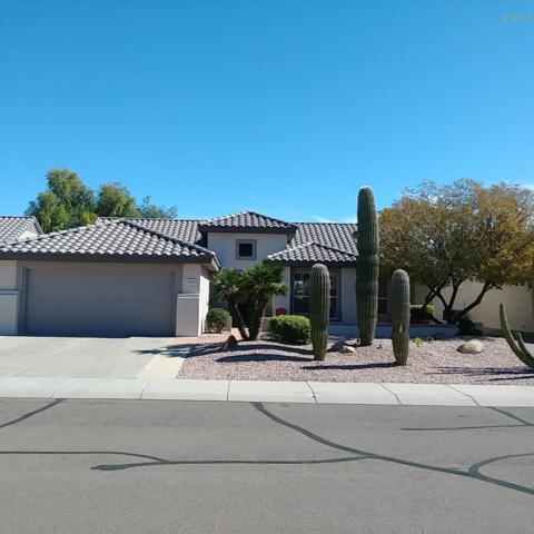 15542 W Clear Canyon Drive, Surprise, AZ 85374 (MLS #5905608) :: Yost Realty Group at RE/MAX Casa Grande