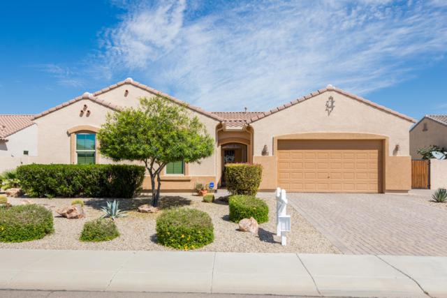 18312 W Denton Avenue, Litchfield Park, AZ 85340 (MLS #5905609) :: Devor Real Estate Associates