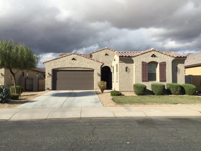 15712 W Almeria Road, Goodyear, AZ 85395 (MLS #5905662) :: RE/MAX Excalibur