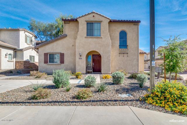 5348 W Molly Lane, Phoenix, AZ 85083 (MLS #5905665) :: Yost Realty Group at RE/MAX Casa Grande