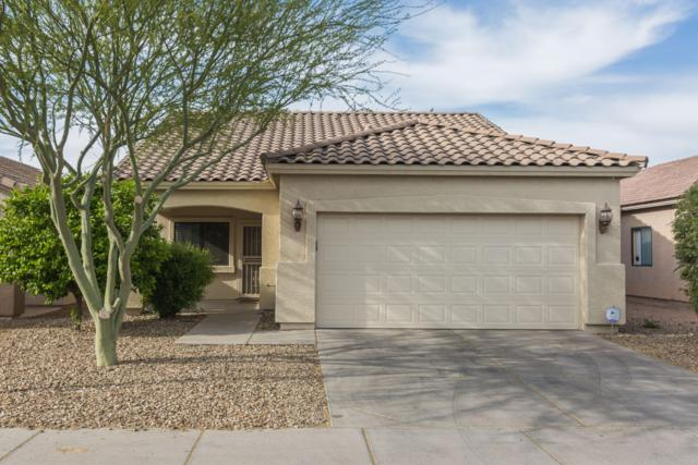 808 W Saint Kateri Avenue, Phoenix, AZ 85041 (MLS #5905775) :: Yost Realty Group at RE/MAX Casa Grande