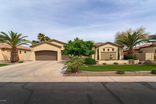 672 E Buena Vista Drive, Chandler, AZ 85249 (MLS #5905789) :: Yost Realty Group at RE/MAX Casa Grande
