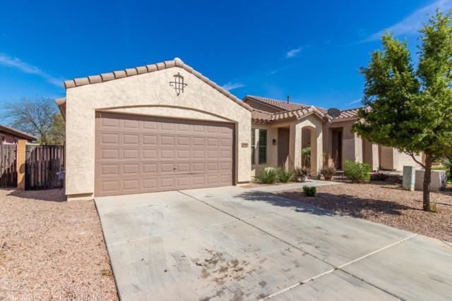 18993 N Miller Way, Maricopa, AZ 85139 (MLS #5905799) :: RE/MAX Excalibur