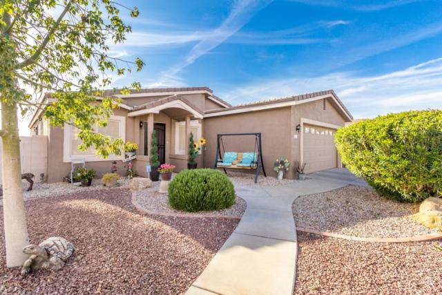 846 E Brookfield Circle, Casa Grande, AZ 85194 (MLS #5905810) :: Yost Realty Group at RE/MAX Casa Grande