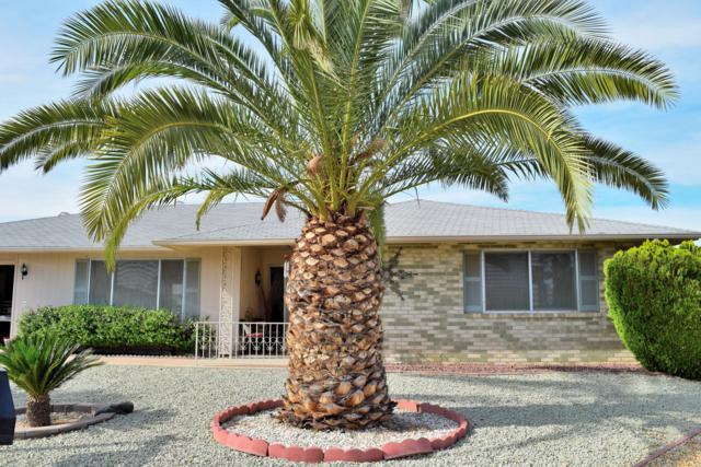 13218 W Kodiak Drive, Sun City West, AZ 85375 (MLS #5905825) :: Yost Realty Group at RE/MAX Casa Grande