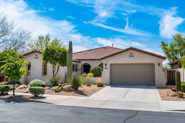 1805 W Bramble Berry Lane, Phoenix, AZ 85085 (MLS #5905837) :: Yost Realty Group at RE/MAX Casa Grande