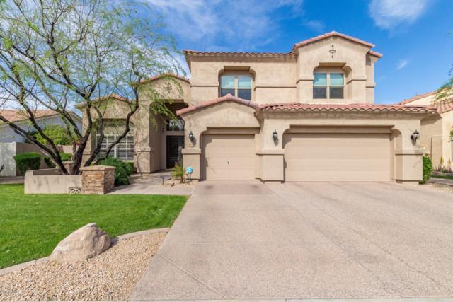 1622 W Kaibab Drive, Chandler, AZ 85248 (MLS #5905881) :: Yost Realty Group at RE/MAX Casa Grande