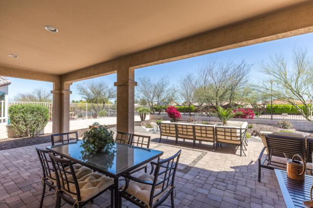 16334 W Sheila Lane, Goodyear, AZ 85395 (MLS #5905949) :: Yost Realty Group at RE/MAX Casa Grande
