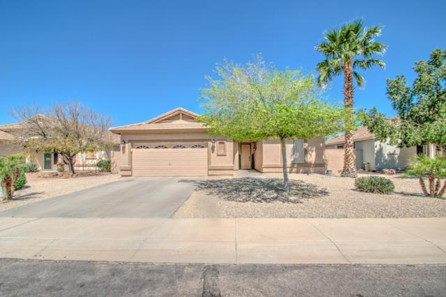 4276 E Loma Vista Street, Gilbert, AZ 85295 (MLS #5905987) :: Occasio Realty