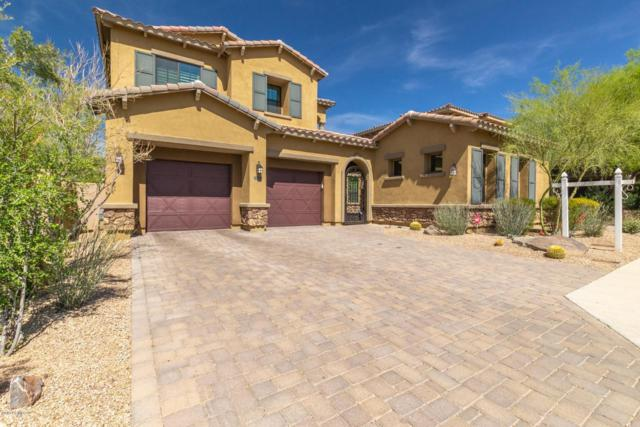 17678 N 98TH Way, Scottsdale, AZ 85255 (MLS #5906007) :: The Everest Team at My Home Group