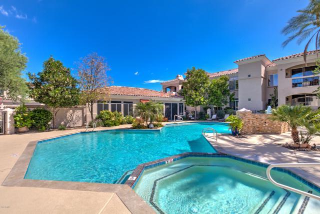 1747 E Northern Avenue #243, Phoenix, AZ 85020 (MLS #5906035) :: Yost Realty Group at RE/MAX Casa Grande