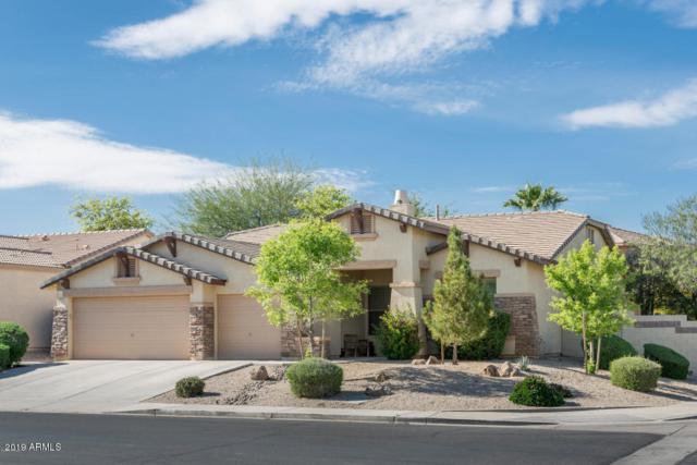 3160 E Doral Drive, Chandler, AZ 85249 (MLS #5906039) :: Power Realty Group Model Home Center