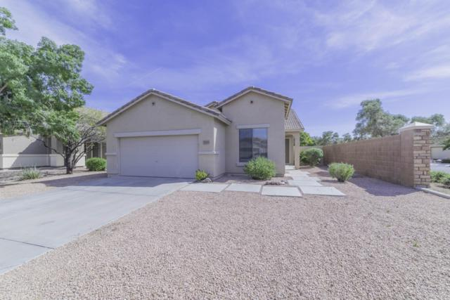 3433 E Arianna Avenue, Gilbert, AZ 85297 (MLS #5906041) :: Yost Realty Group at RE/MAX Casa Grande