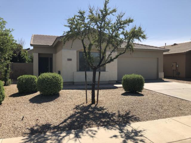 14833 W Larkspur Drive, Surprise, AZ 85379 (MLS #5906066) :: Yost Realty Group at RE/MAX Casa Grande