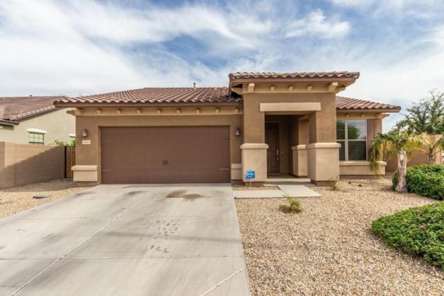 16065 W Yavapai Street, Goodyear, AZ 85338 (MLS #5906077) :: CC & Co. Real Estate Team