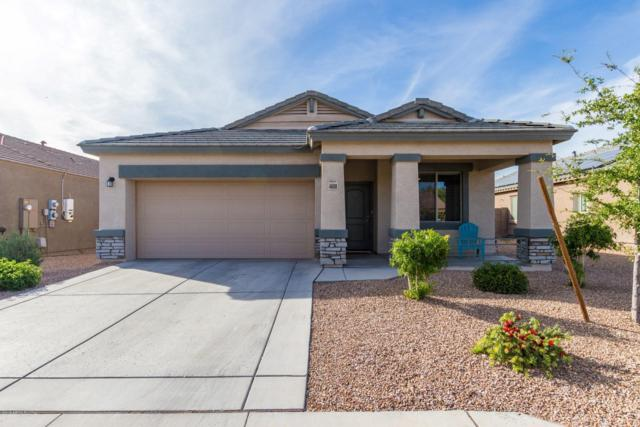 4608 S 237TH Drive, Buckeye, AZ 85326 (MLS #5906089) :: Occasio Realty