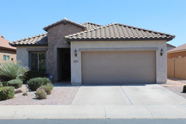 11065 E Sorpresa Avenue, Mesa, AZ 85212 (MLS #5906095) :: Occasio Realty