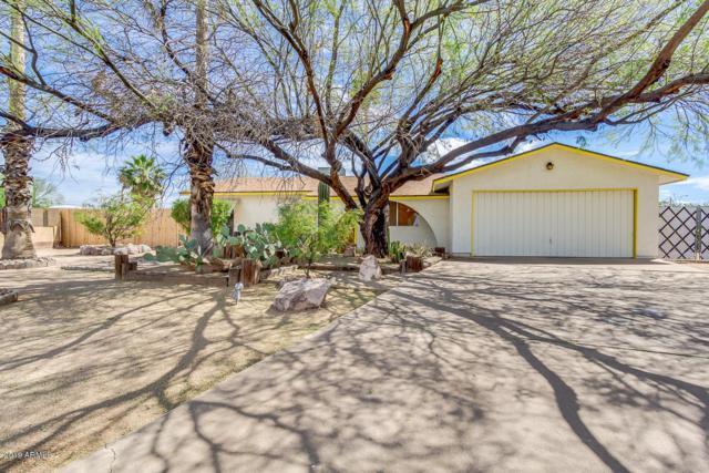 161 W 15TH Avenue, Apache Junction, AZ 85120 (MLS #5906105) :: Yost Realty Group at RE/MAX Casa Grande