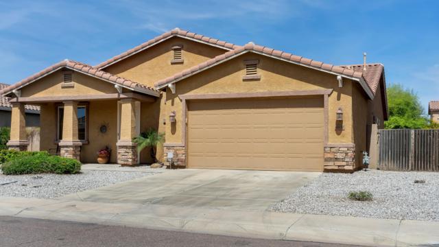 6832 W Carter Road, Laveen, AZ 85339 (MLS #5906108) :: Yost Realty Group at RE/MAX Casa Grande