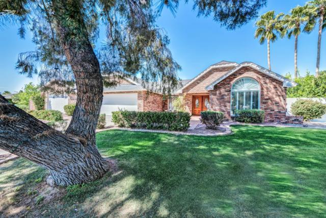 4626 E Janice Way, Phoenix, AZ 85032 (MLS #5906196) :: RE/MAX Excalibur