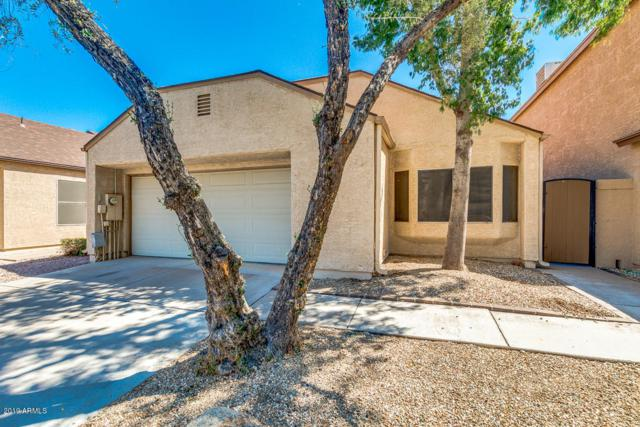 3440 E Southern Avenue #1009, Mesa, AZ 85204 (MLS #5906197) :: Yost Realty Group at RE/MAX Casa Grande