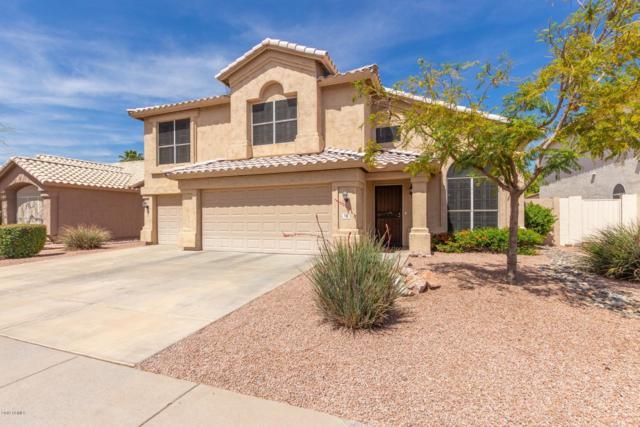 716 W Grandview Road, Phoenix, AZ 85023 (MLS #5906252) :: Yost Realty Group at RE/MAX Casa Grande