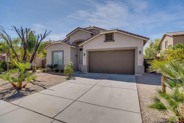 3371 W White Canyon Road, Queen Creek, AZ 85142 (MLS #5906253) :: Yost Realty Group at RE/MAX Casa Grande