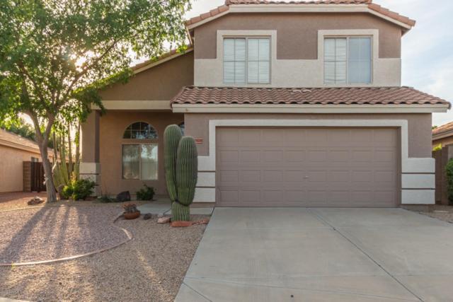 14928 W Lamoille Drive, Surprise, AZ 85374 (MLS #5906260) :: Yost Realty Group at RE/MAX Casa Grande