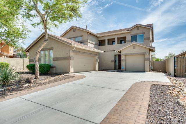 26923 N 54TH Avenue, Phoenix, AZ 85083 (MLS #5906263) :: Yost Realty Group at RE/MAX Casa Grande
