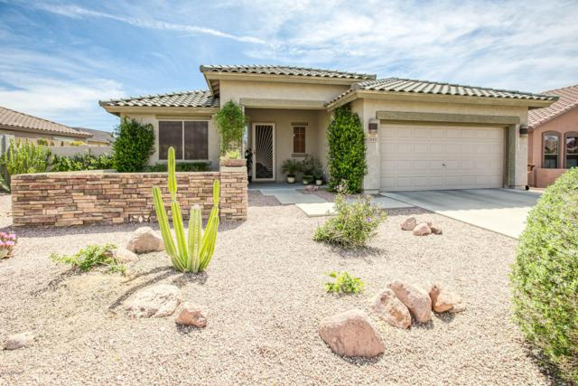7643 E Globemallow Lane, Gold Canyon, AZ 85118 (MLS #5906287) :: Yost Realty Group at RE/MAX Casa Grande