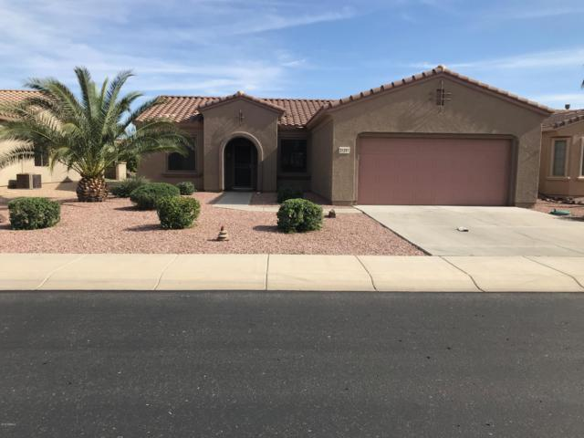 21251 N Redington Point Drive, Surprise, AZ 85387 (MLS #5906367) :: Yost Realty Group at RE/MAX Casa Grande