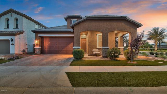 2608 S Rose Garden Lane, Mesa, AZ 85209 (MLS #5906373) :: RE/MAX Excalibur