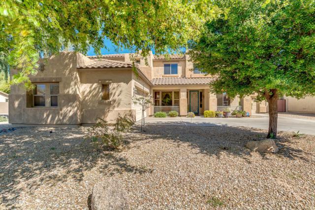 19974 E Reins Road, Queen Creek, AZ 85142 (MLS #5906376) :: Yost Realty Group at RE/MAX Casa Grande