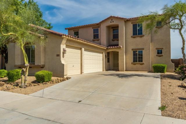 263 S 172ND Drive, Goodyear, AZ 85338 (MLS #5906382) :: Riddle Realty