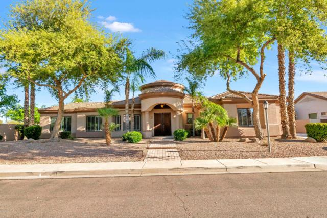 2654 E Mead Place, Chandler, AZ 85249 (MLS #5906407) :: Yost Realty Group at RE/MAX Casa Grande