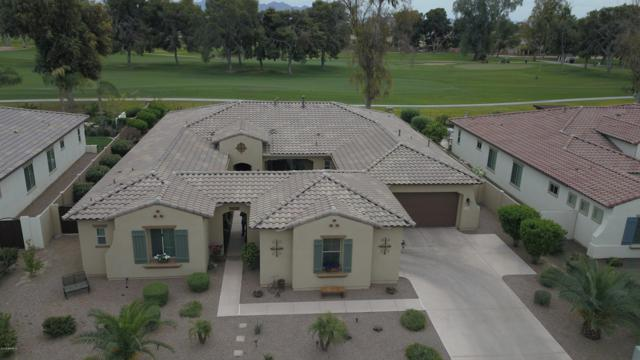 14551 W Mountain View Drive, Litchfield Park, AZ 85340 (MLS #5906409) :: The Results Group