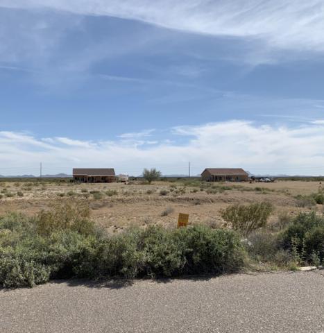 30303 W Mckinley Street, Buckeye, AZ 85396 (MLS #5906476) :: Yost Realty Group at RE/MAX Casa Grande