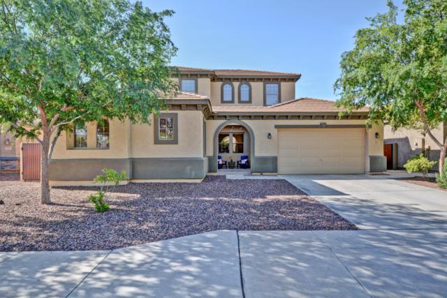 11917 W Villa Hermosa Lane, Sun City, AZ 85373 (MLS #5906484) :: Yost Realty Group at RE/MAX Casa Grande